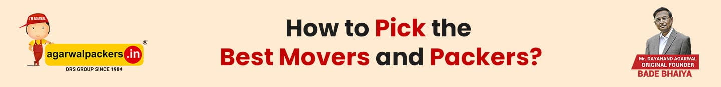 How to Pick The Best Movers And Packers?